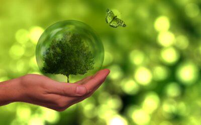 Læs mere om hvordan du fokuserer på grøn omstilling i din virksomhed